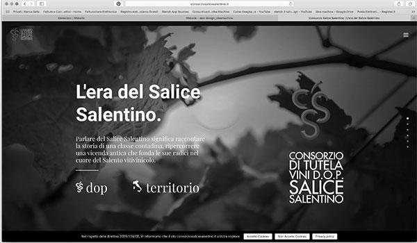 siti web - consorziosalicesalentino.it