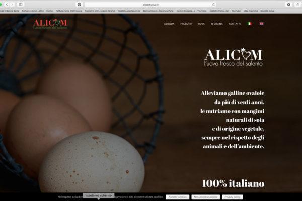 alicomuova-600x400_c